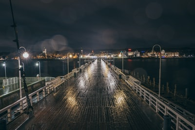 bridge photograph during nighttime