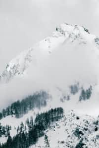 Avalanche  stories