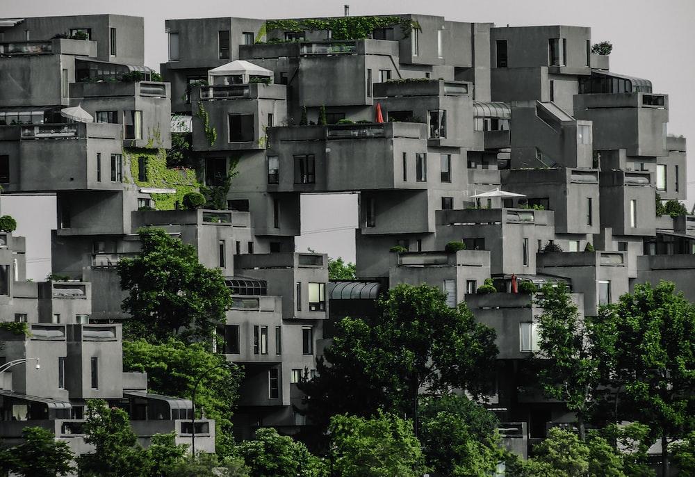 gray high-rise buildings near trees