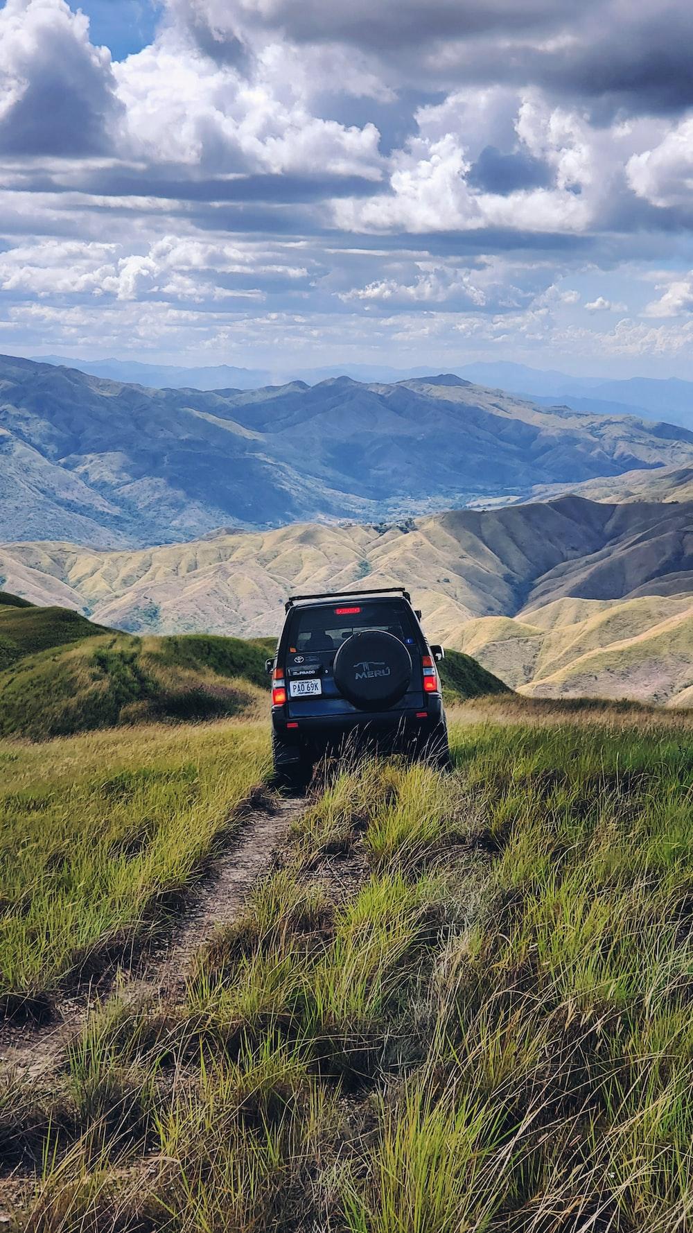 black SUV passing through grasses