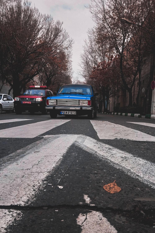 vehicles on road between trees