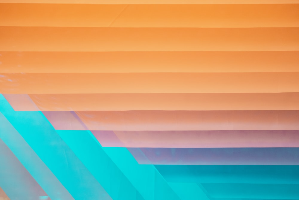 orange and teal illustration