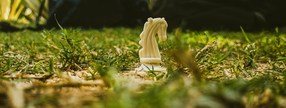 white horse chess piece on grass