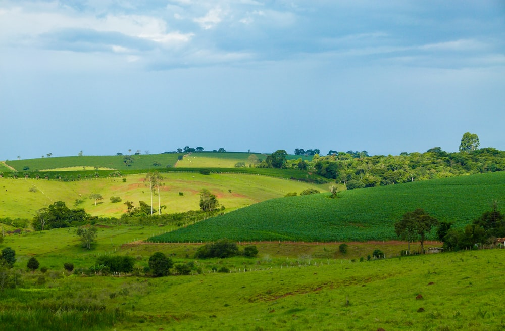 landscape photography of green pastures under a calm blue sky