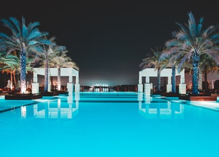swimming pool between green palm trees at night