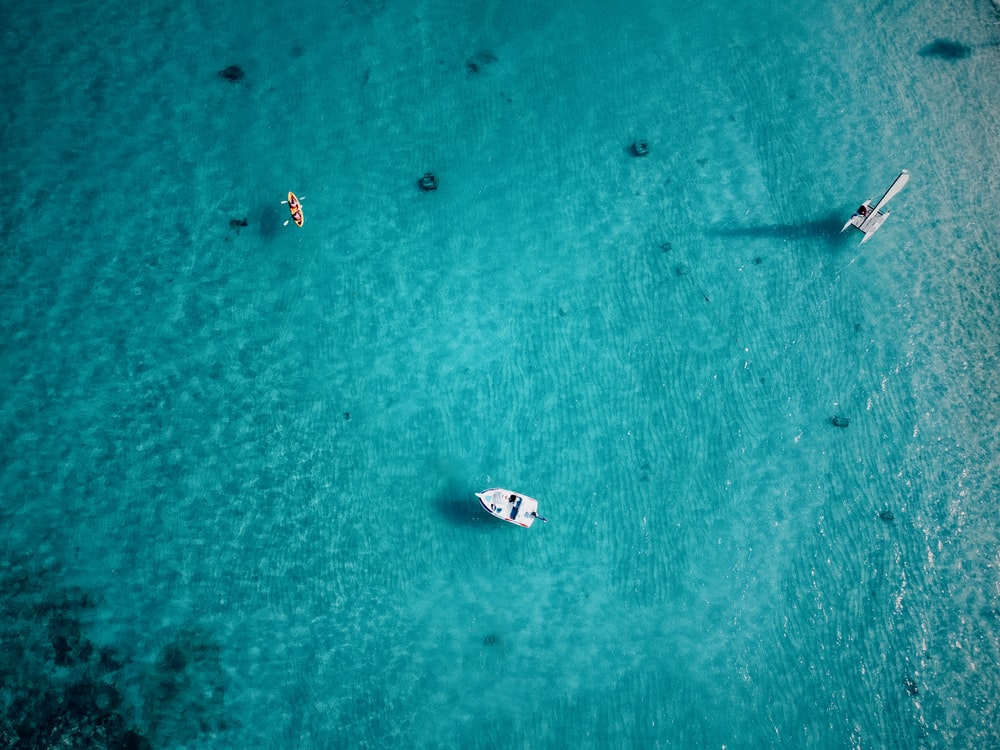 blue water and three boats