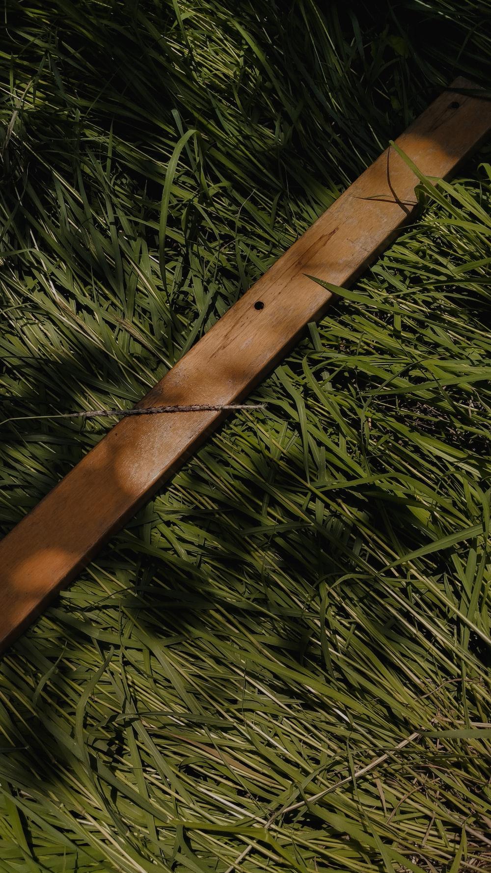 brown stick on green grass