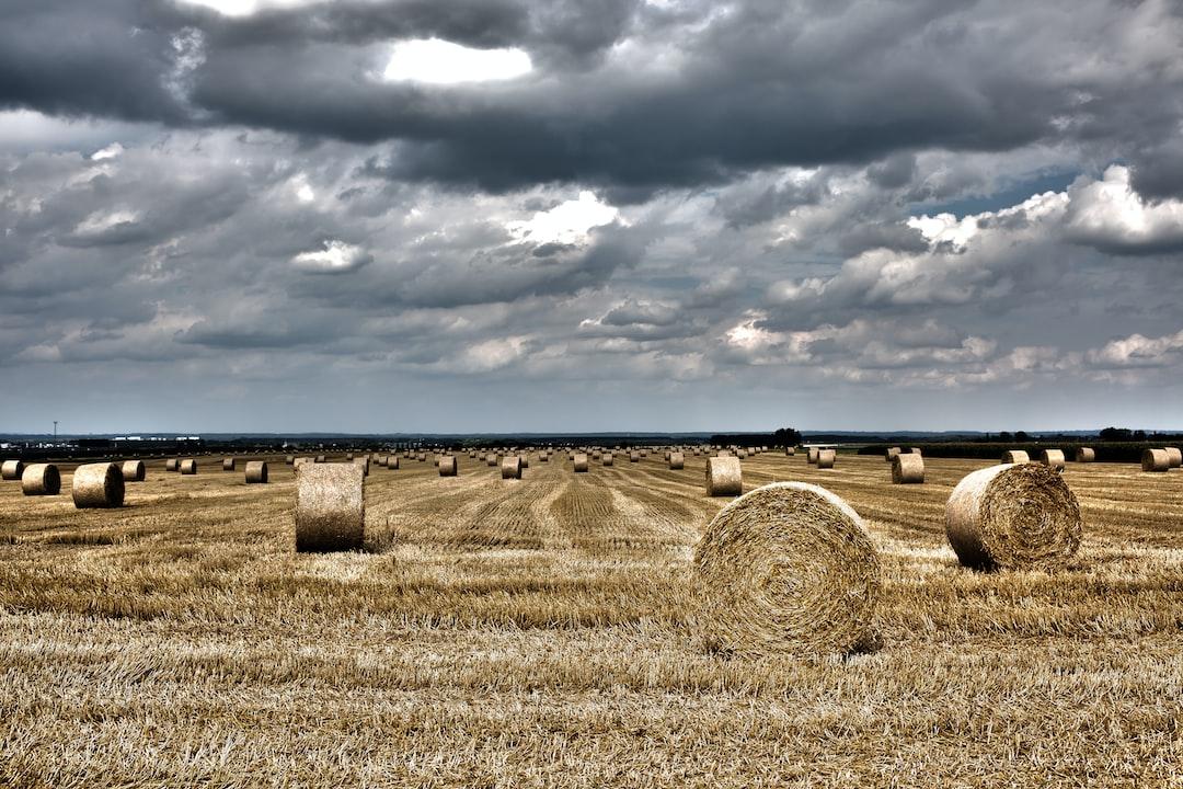 HDR haystacks.