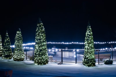 lit christmas trees christmas tree teams background