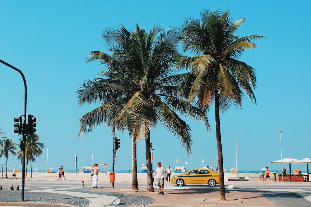 people walking near coconut trees and yellow car during daytime
