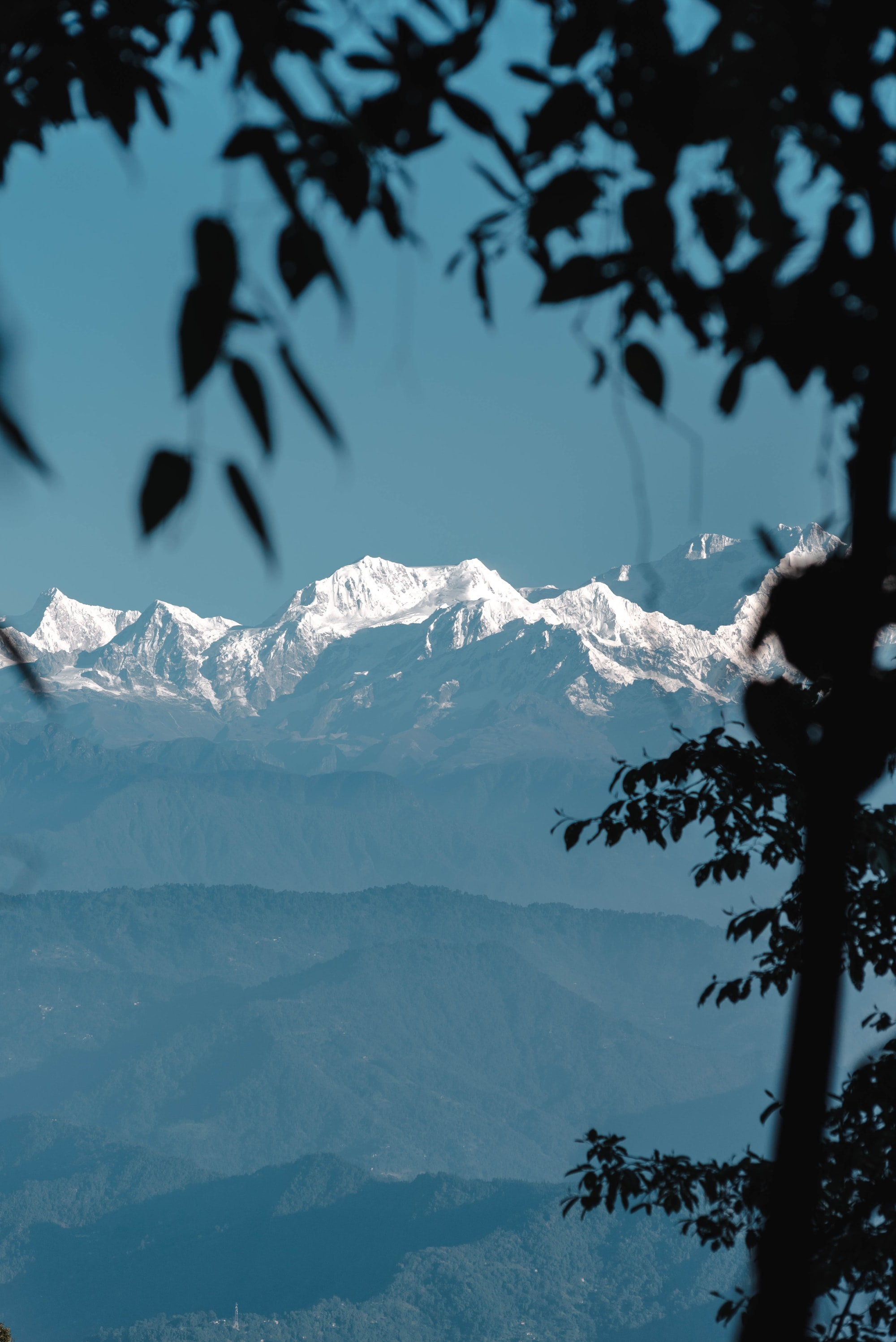 the view from Mall Rd in Darjeeling.