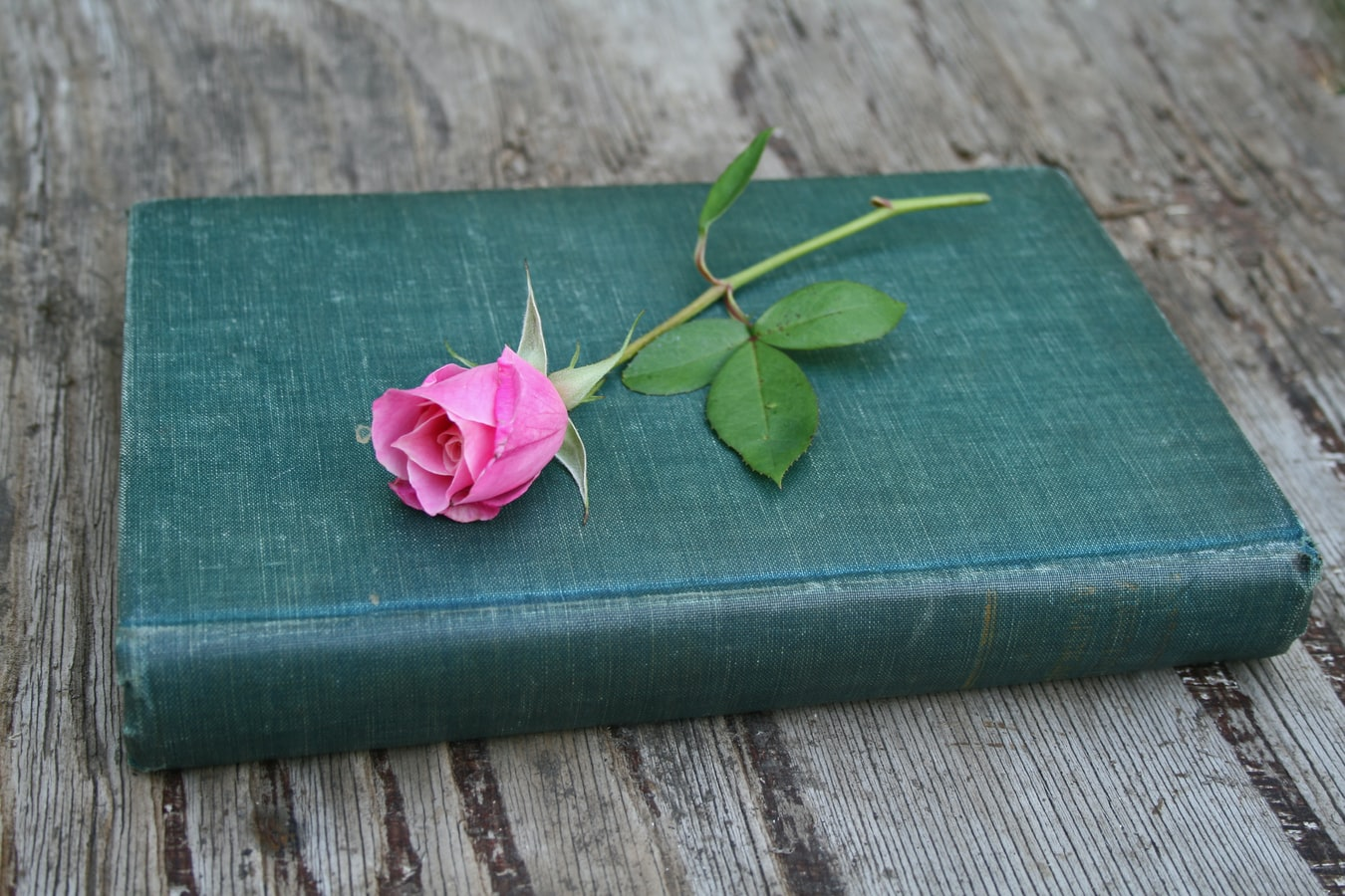 Book and a flower