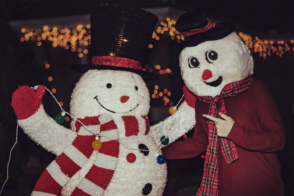 shallow focus photo of person wearing snowman costume
