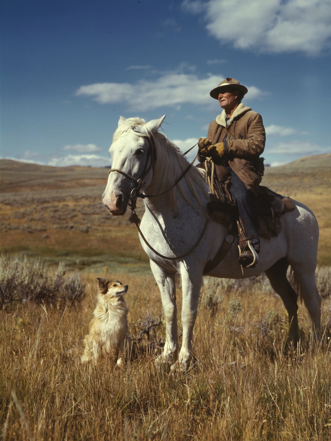 Shepherd with his horse and dog on Gravelly Range, Madison County, Montana. Color transparency by Russell Lee, 1942. From the Farm Security Administration/Office of War Information Collection. Library of Congress Prints & Photographs Division.  https://www.loc.gov/resource/fsac.1a35022/