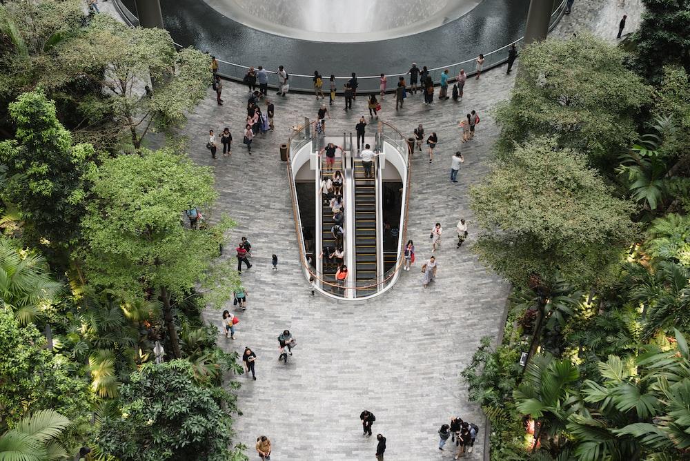 people walking in indoor garden