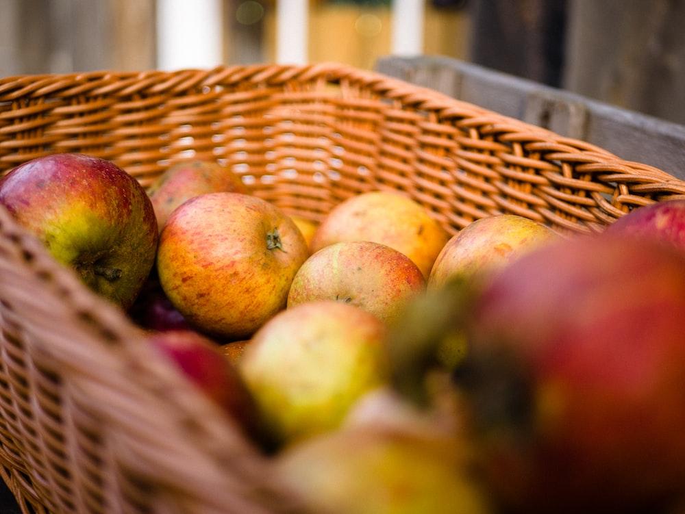 apple fruits