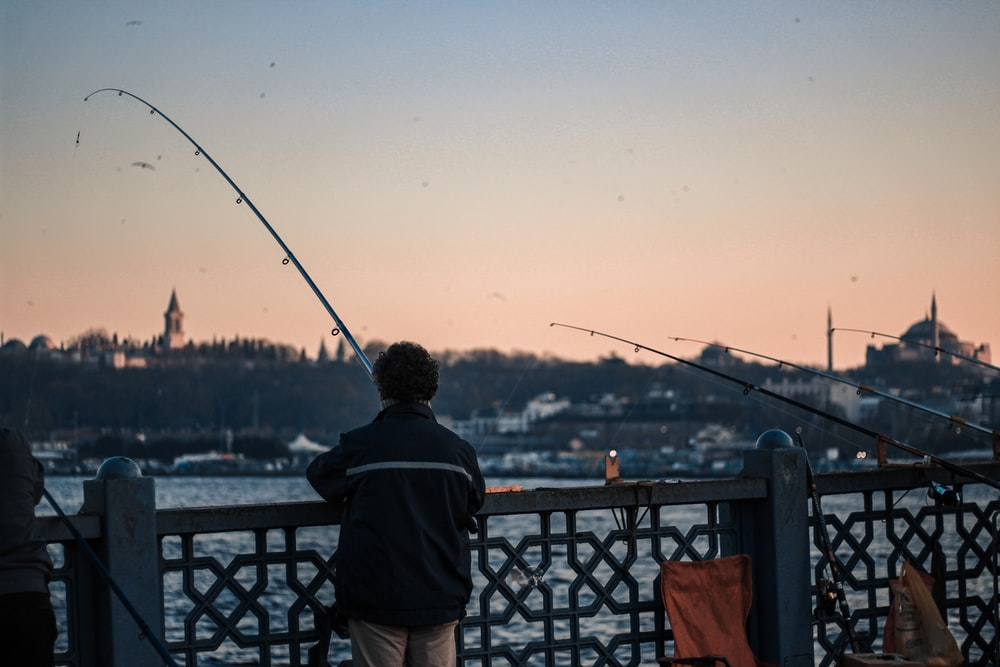 shallow focus photo of person fishing