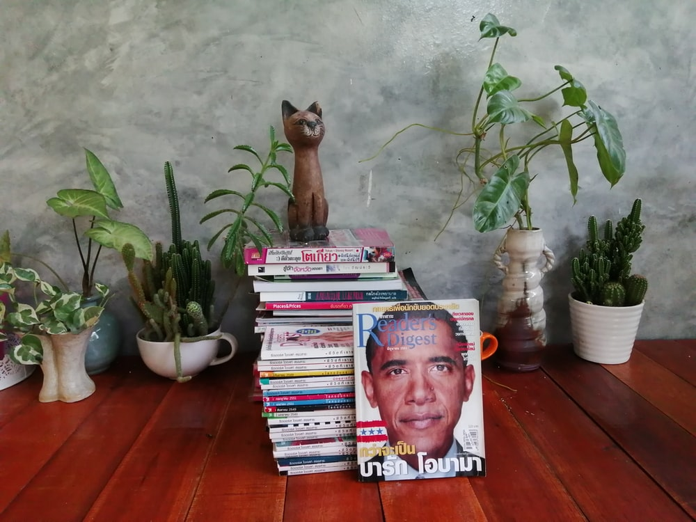 stack of magazines beside potted plants