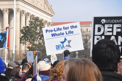 pro-life for the whole life poster democrat zoom background