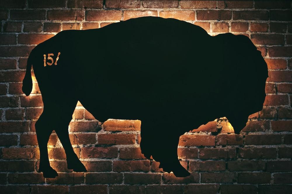 black bull sign
