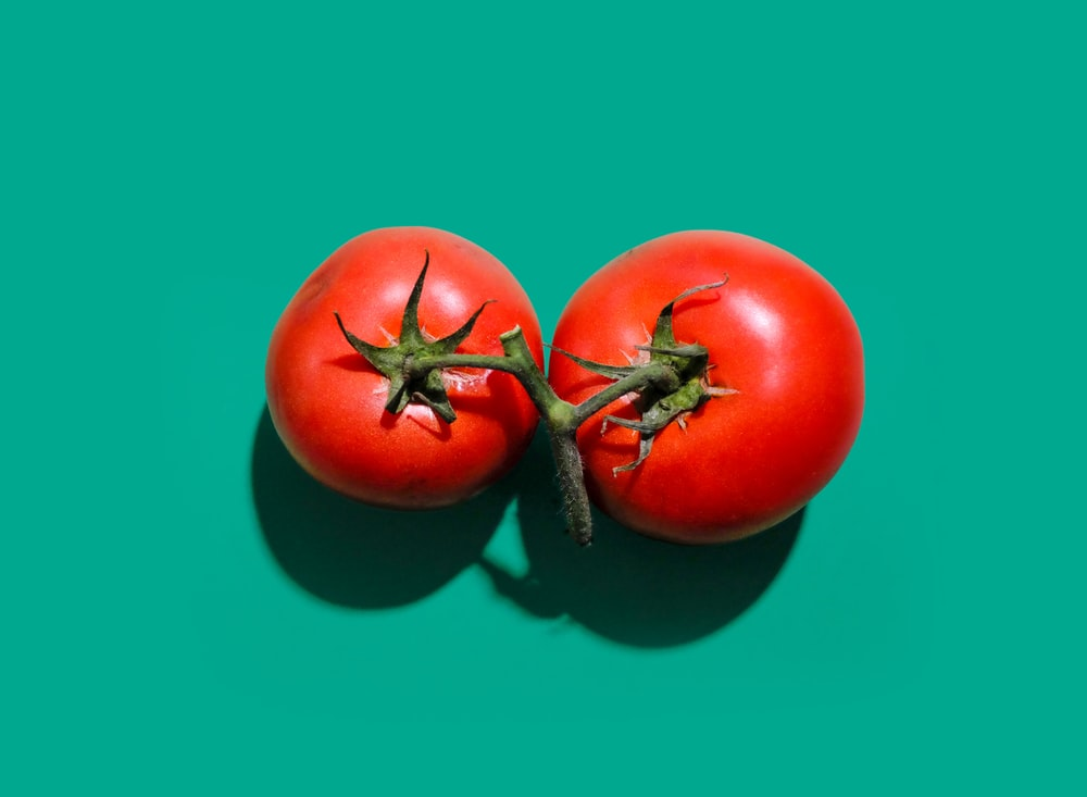 two red tomatoes in green background