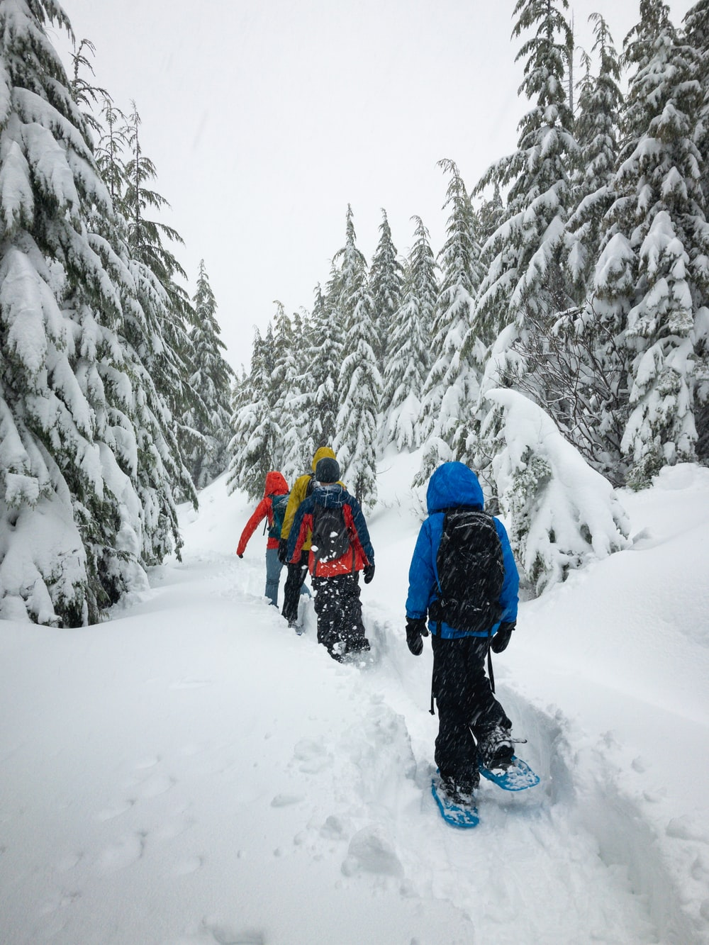 four person walking on snow field