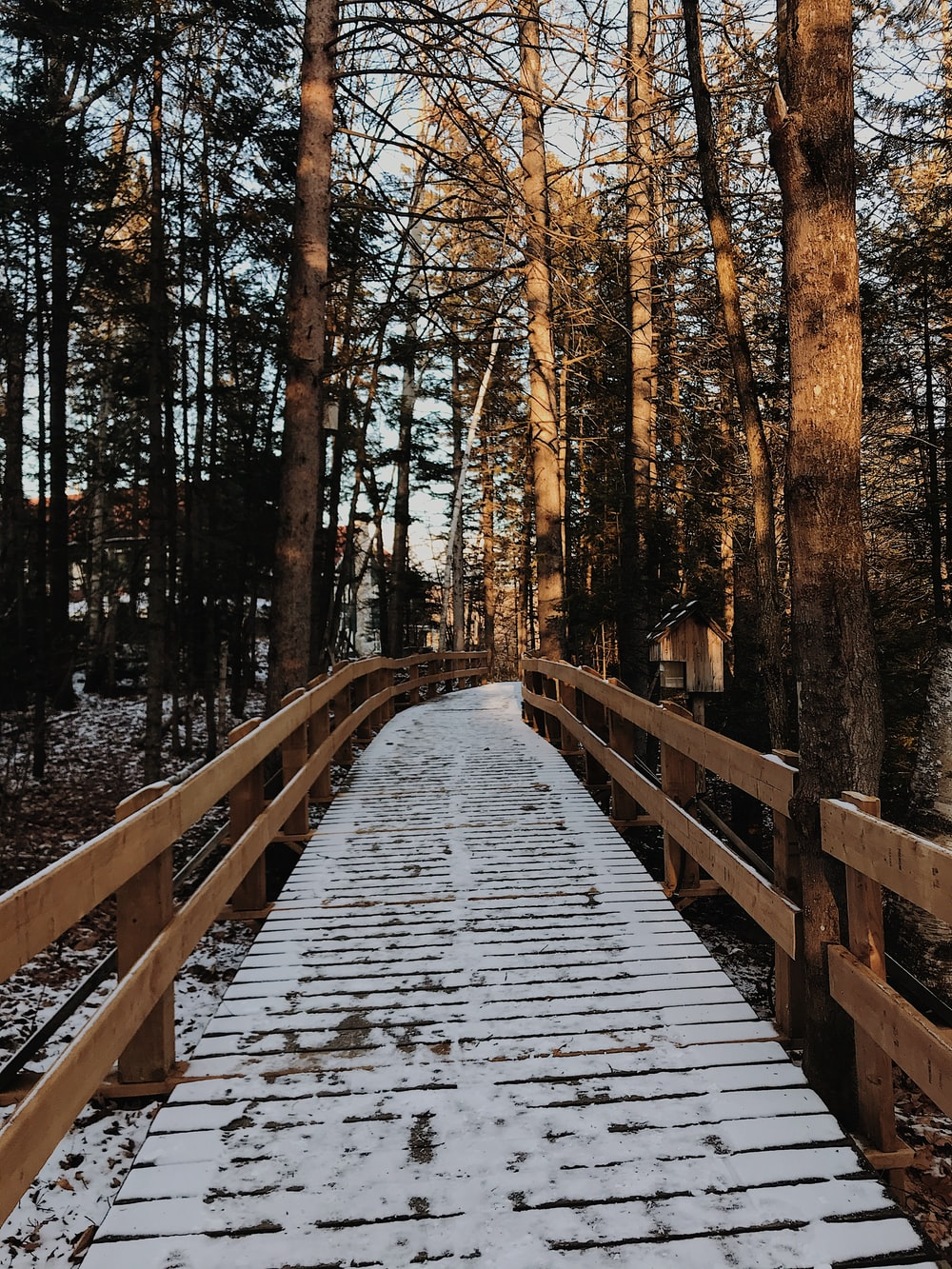 snow covered brown wooden bridge between trees