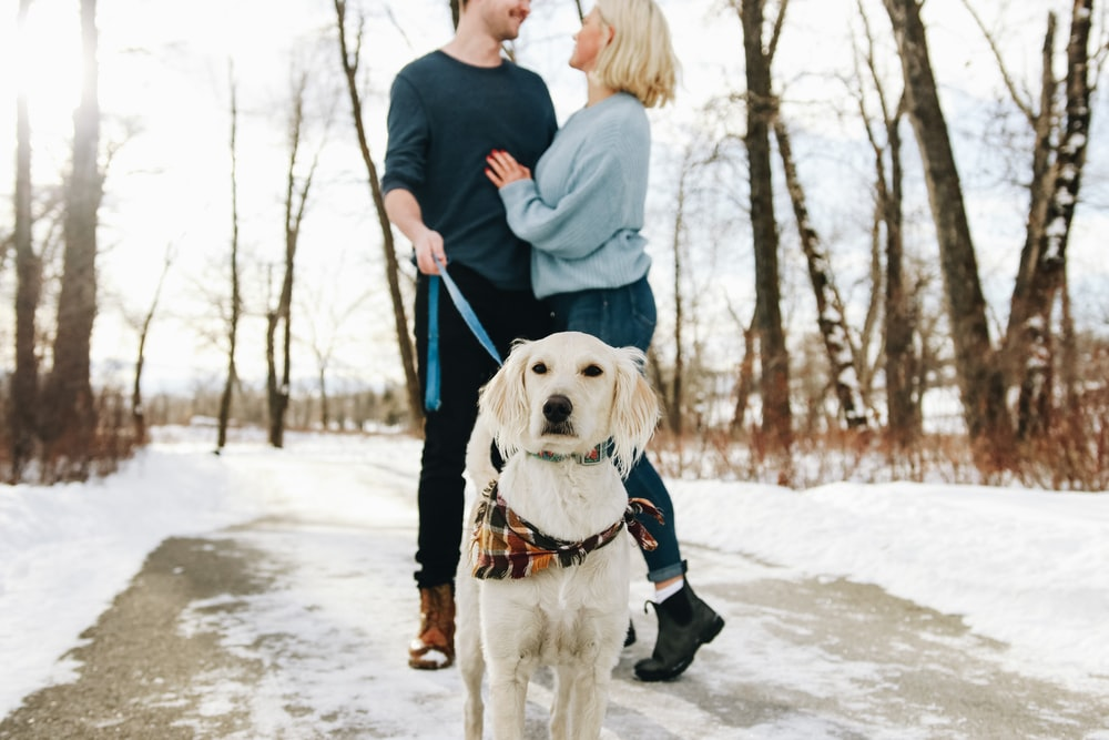 man holding leash of tan dog