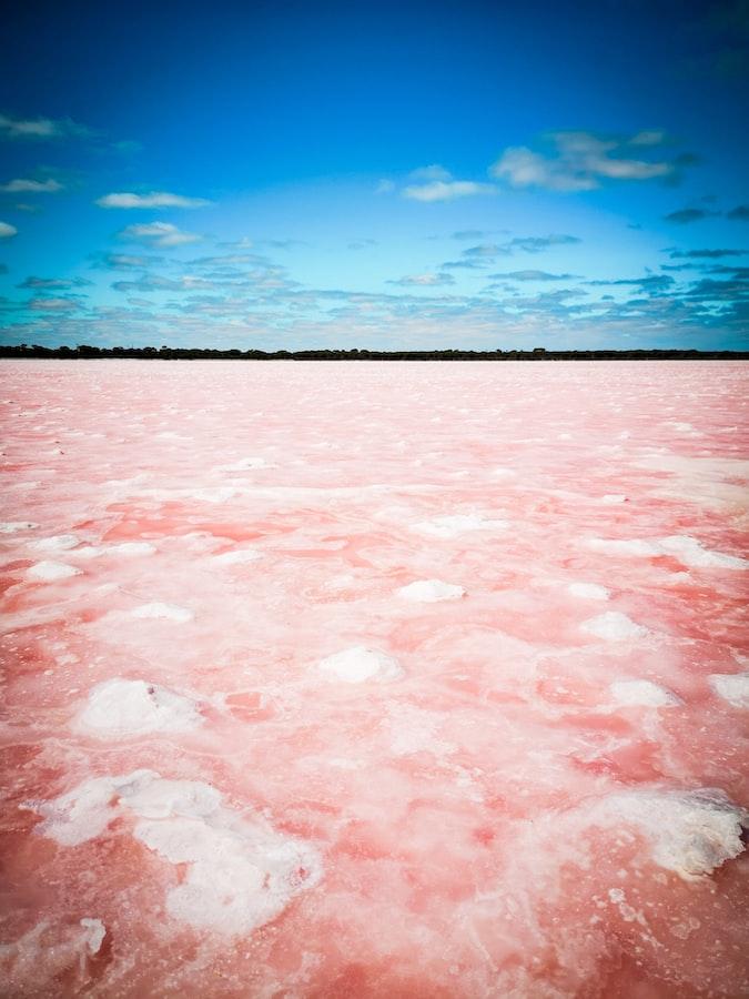 Pink lake in Australia