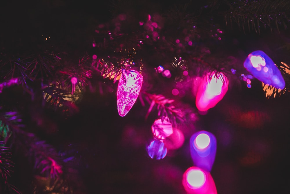 purple and pink string lights