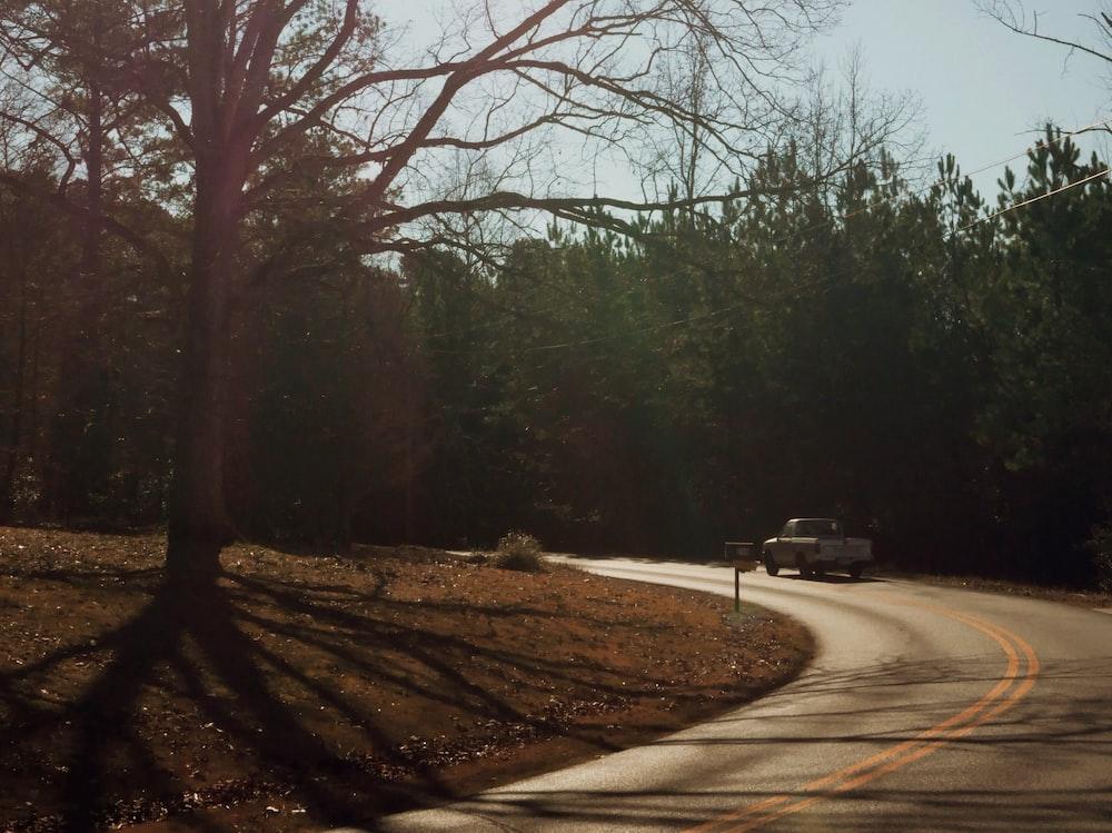 pickup trcu kon road between trees