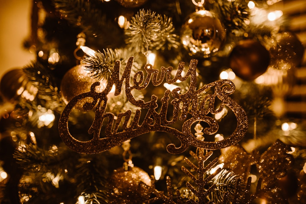 selective focus photography of Merry Christmas text hanged on Christmas tree