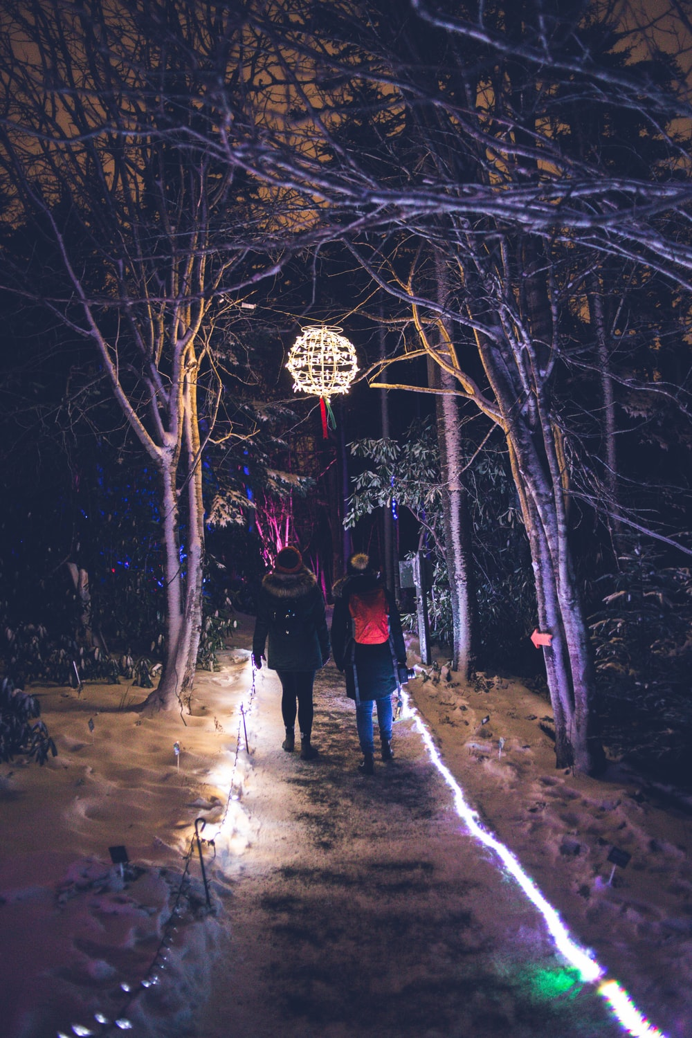 two people walking on pathway between trees at night