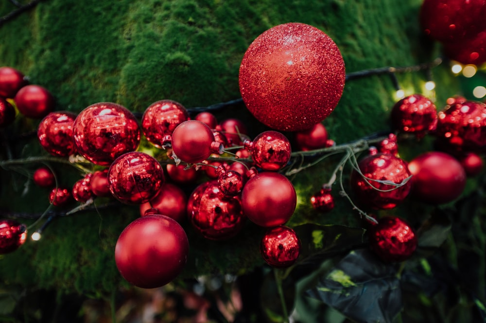 selective focus photography of red baubles on green mosses