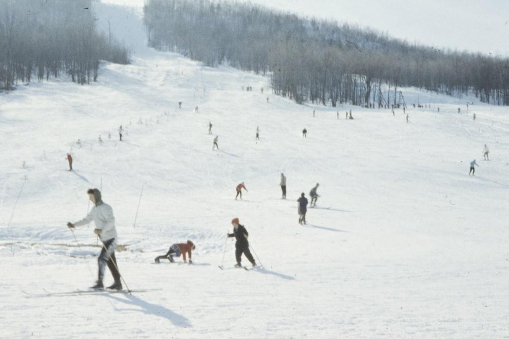 people doing snow boarding on field