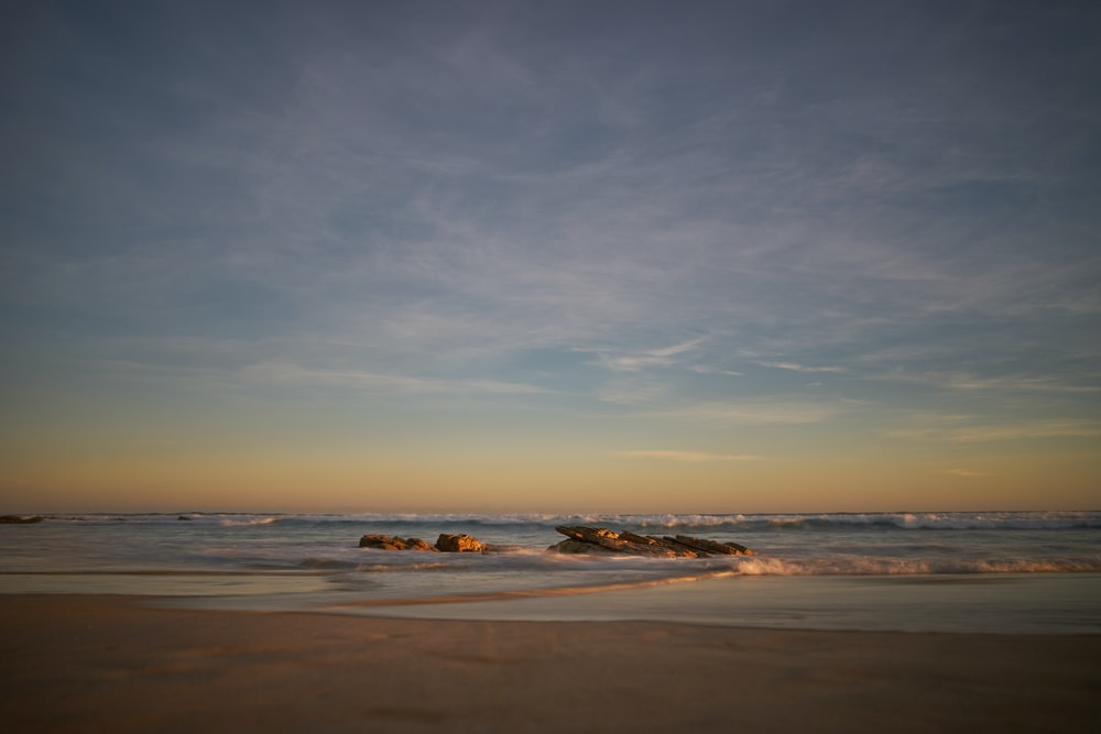 photography of seashore during daytime