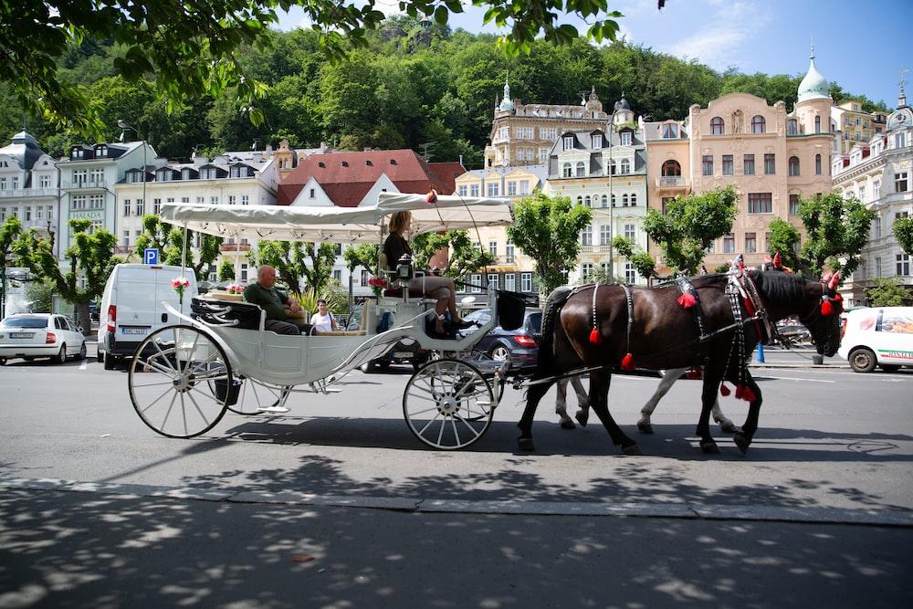 men riding carriage