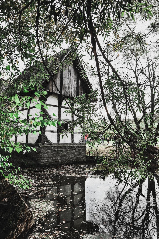 white and grey house near lake