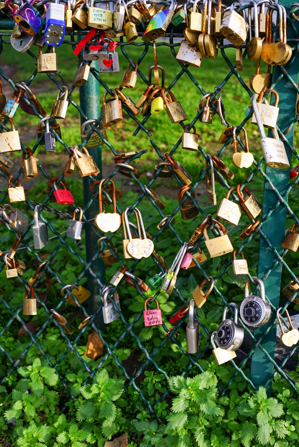 assorted-color padlock on fence