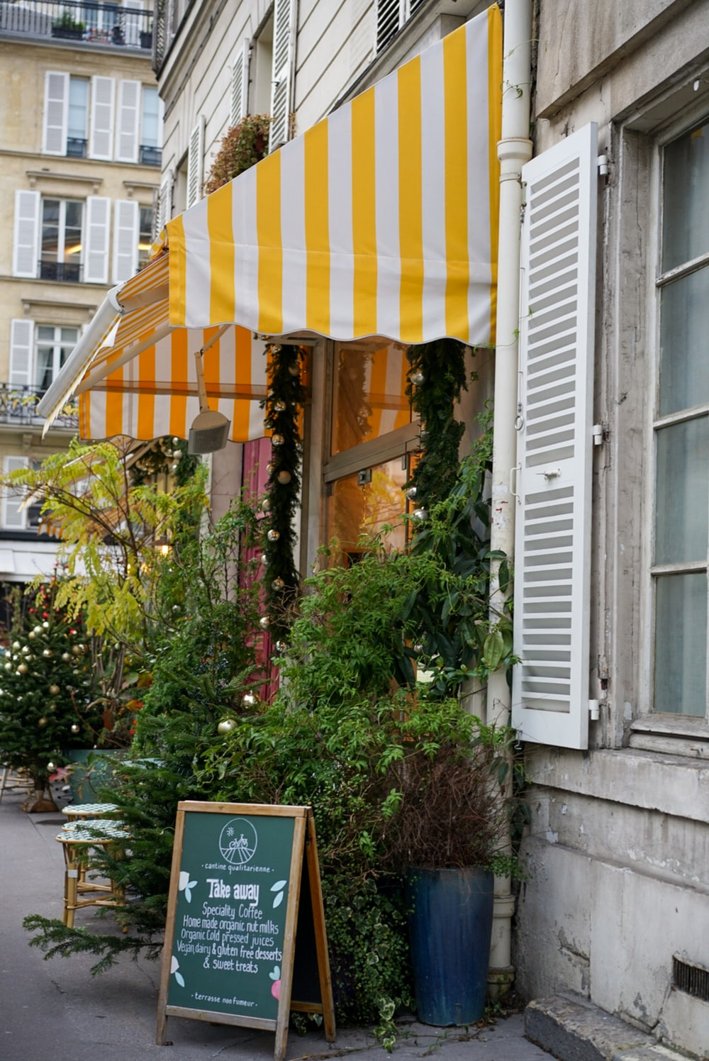 plants under awning