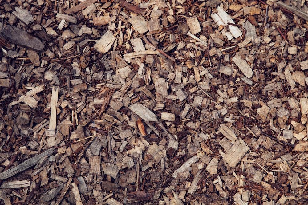brown wood debris