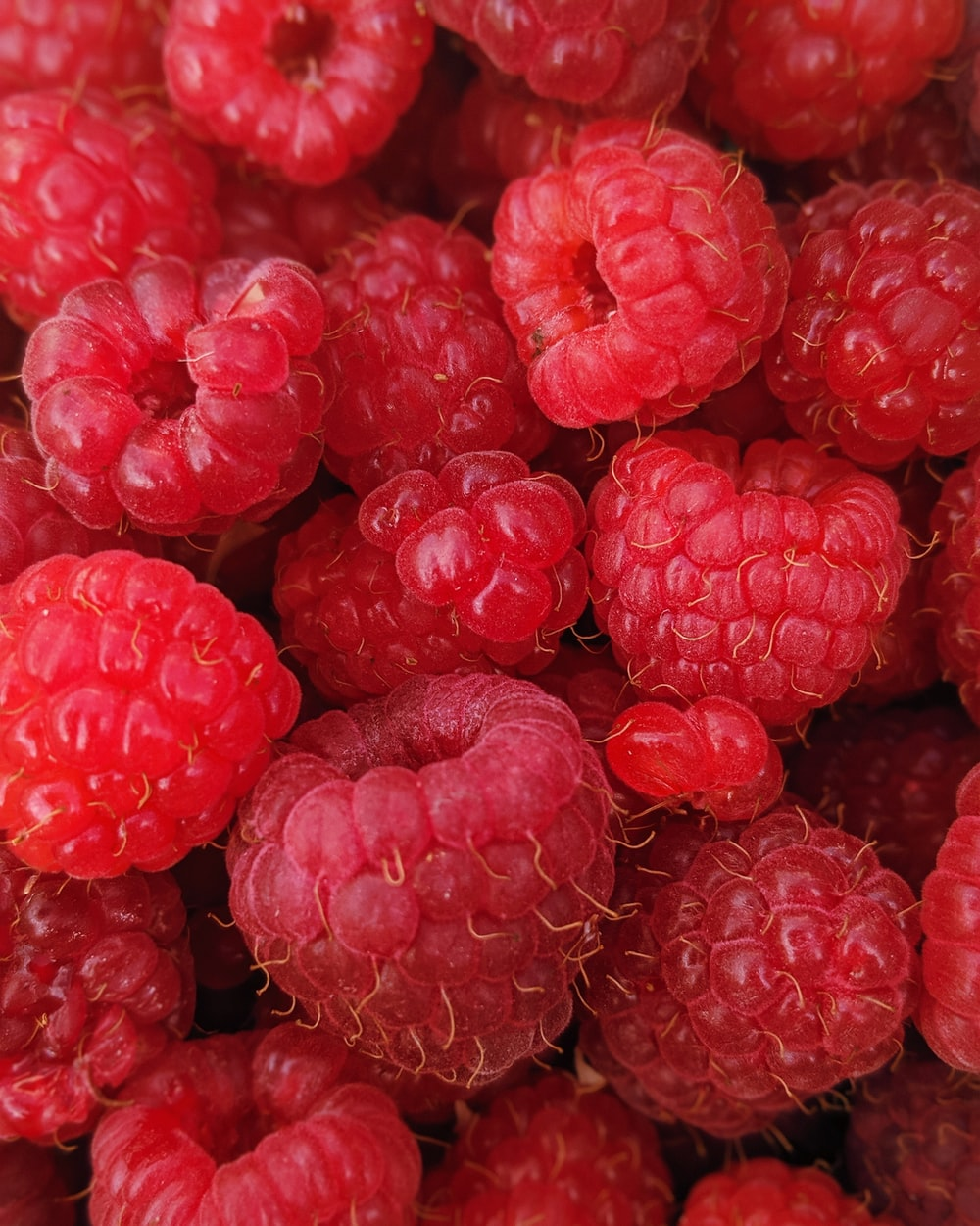 macro photography of raspberry fruits