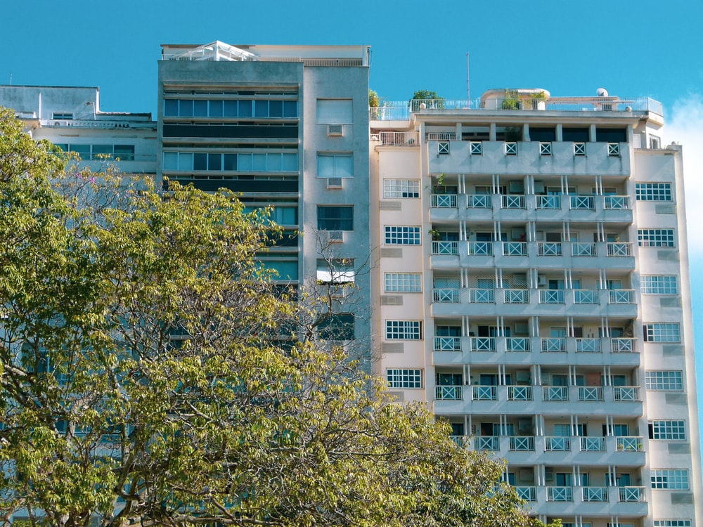 low-angle photography of blue high-rise building near tree under blue sky