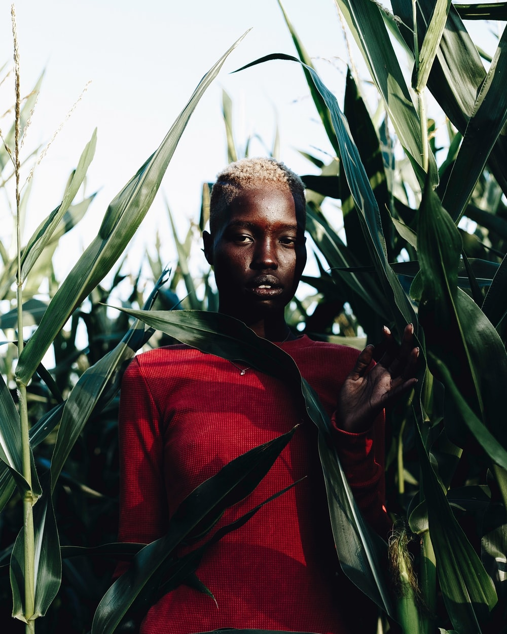 selective focus photography of man behind green plants