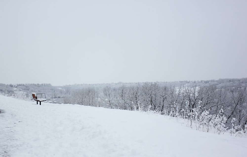 grayscale photography of field and snow covered with snow