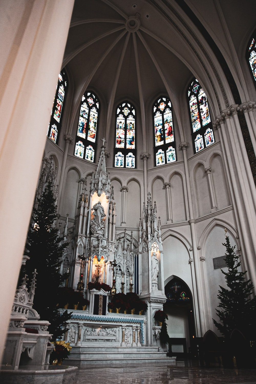 Christmas trees in cathedral