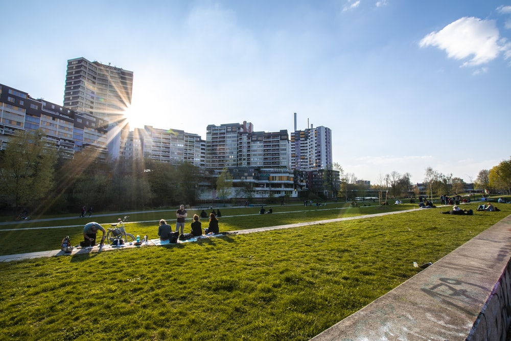 people at the grass field near buildings during day