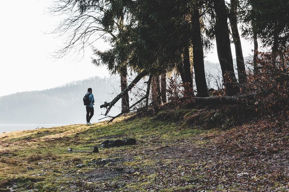 man walking beside trees during daytime