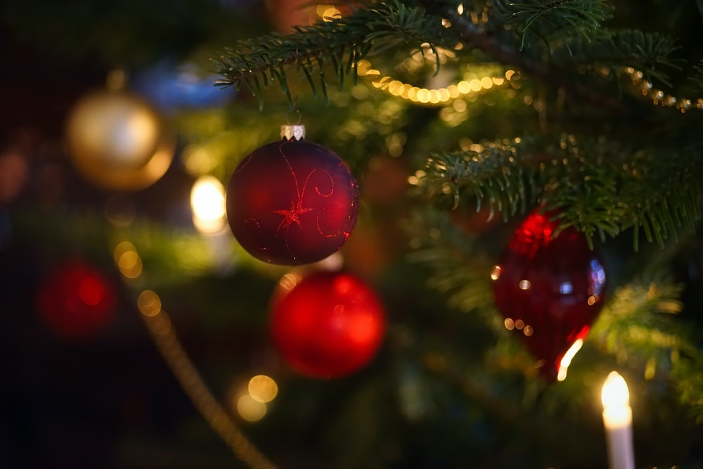 selective focus photography of red baubles on green Christmas tree