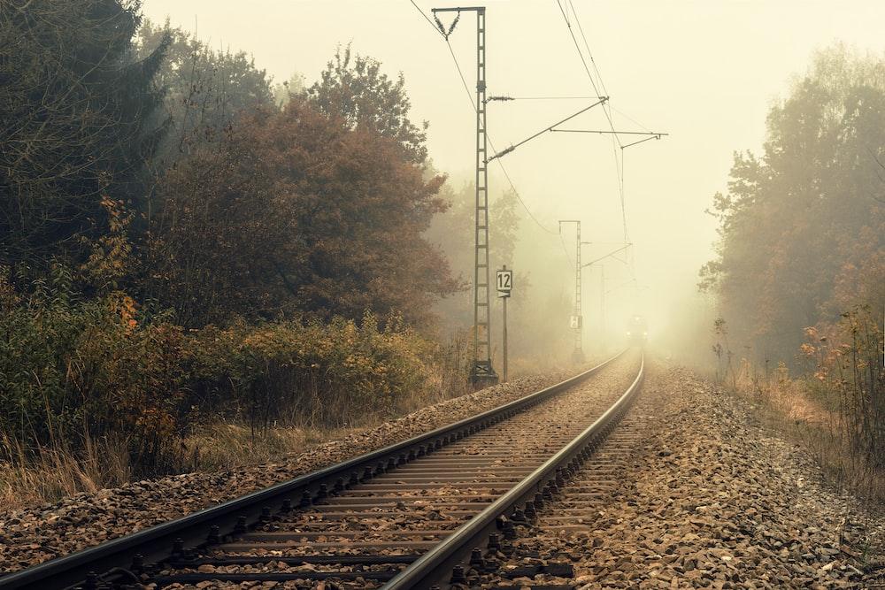 train railway between green trees during daytime